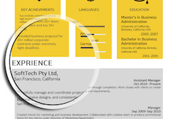 professional_outlook_resume